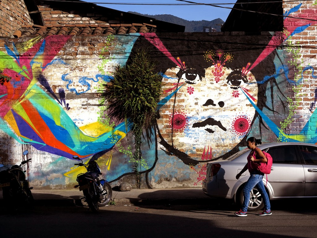 Stinkfish wall in Medellin – Colombia