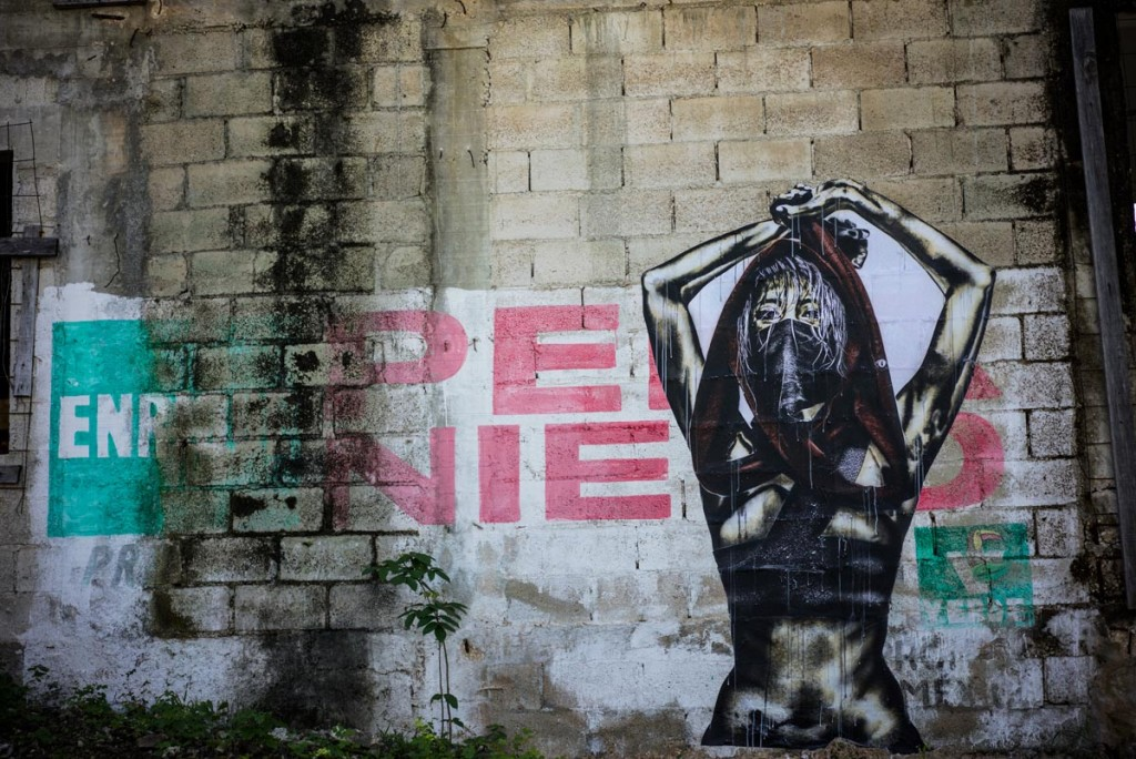Eddie Colla and D Young V in Mexico (18)