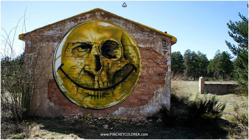 Pinche wall