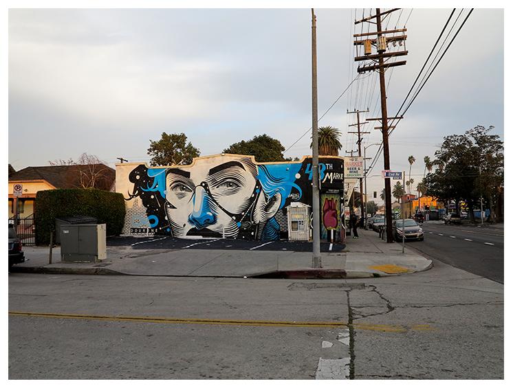 DOURONE South Central LA (1)