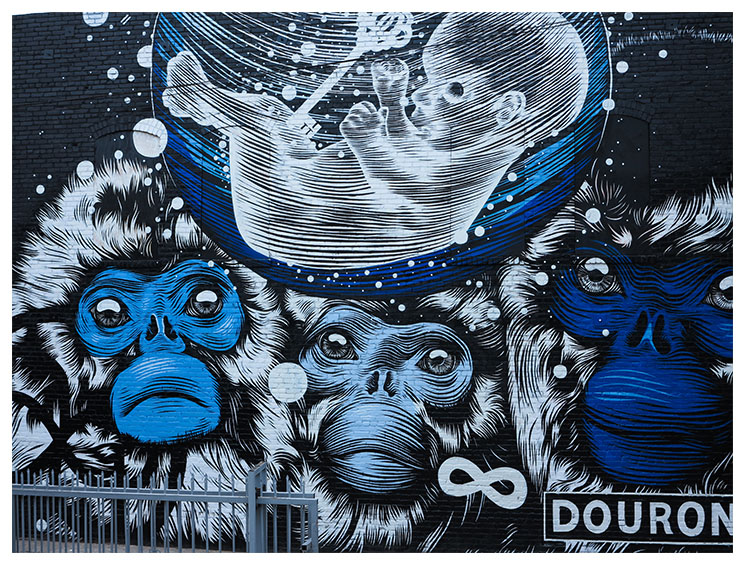 NEW MURAL IN ECHO PARK, LOS ANGELES BY DOURONE