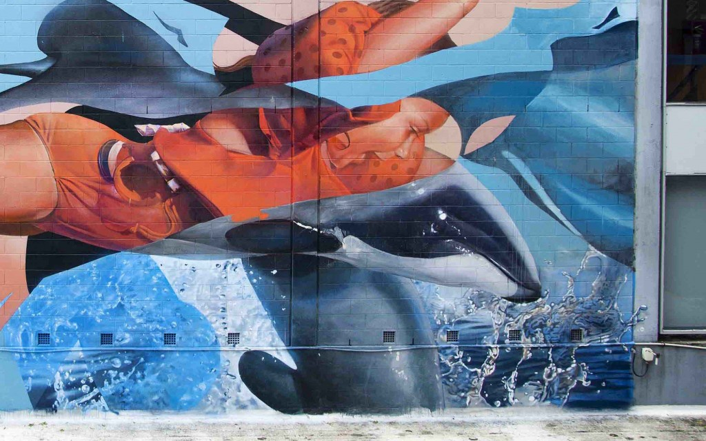 New walls by Telmo Miel