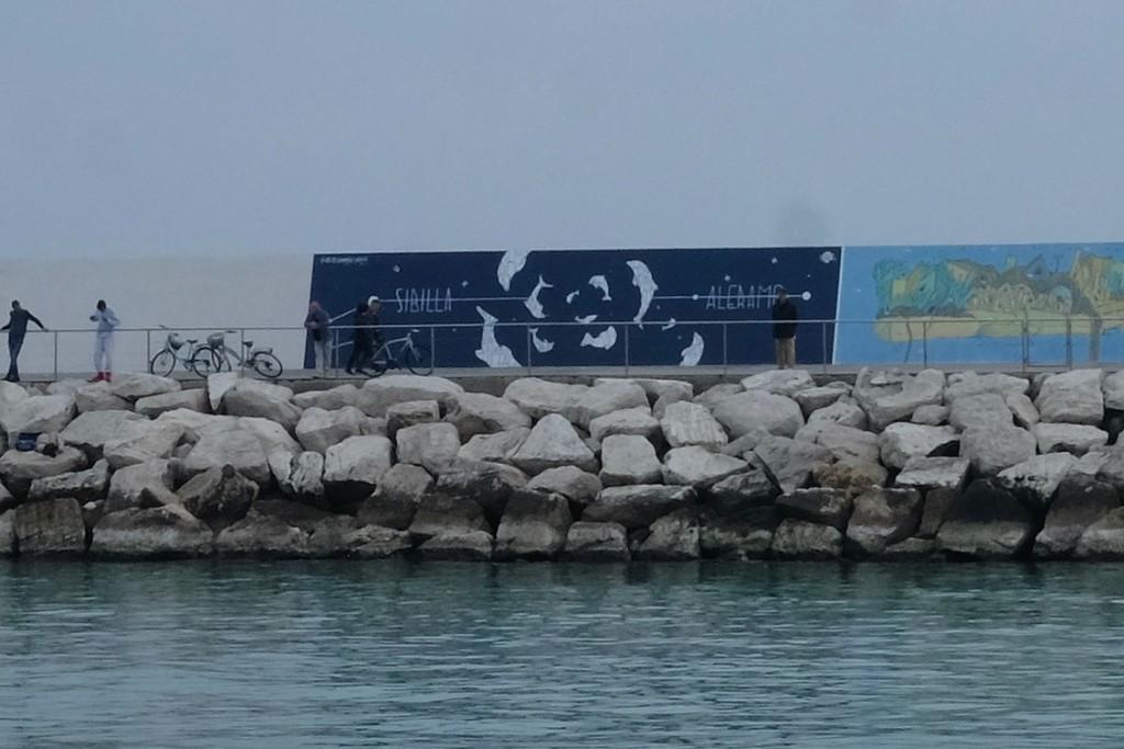 """Dolphins"" – Opiemme tribute to Sibilla Aleramo"