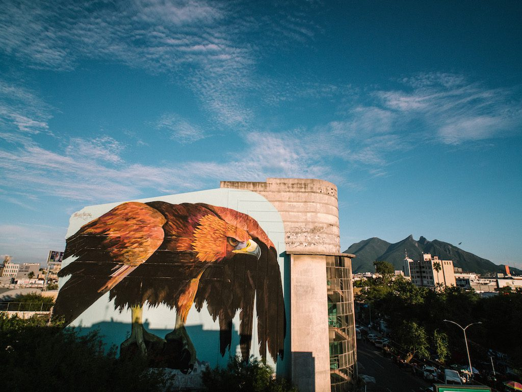 """Fuerza, México"" Huge wall by Thiago Mazza for IPAF Festival"