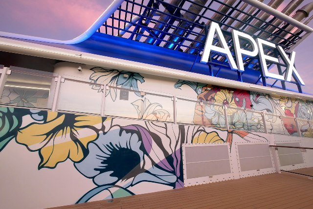 Nerone Paints 180m2 walls on Cruise Ship