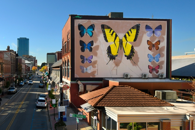 Hyper-Realistic Monumental Butterfly Murals Land In Arkansas