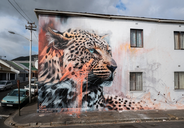 Sonny new mural on leopard conservation
