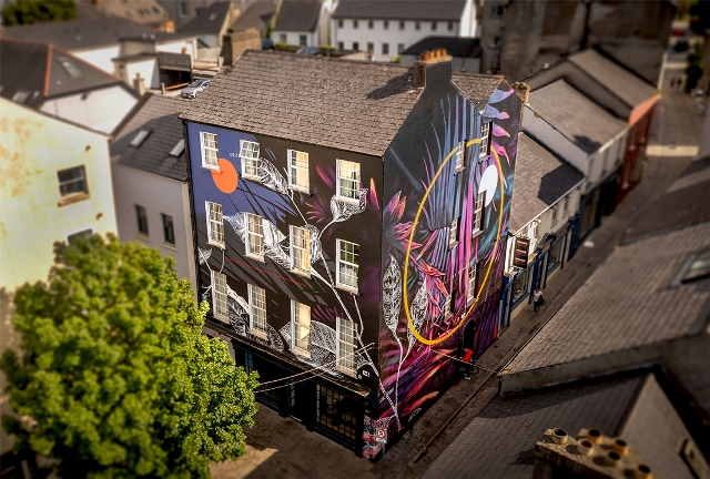 Fabio Petani mural in Waterford